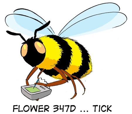 Flower 347D ... tick