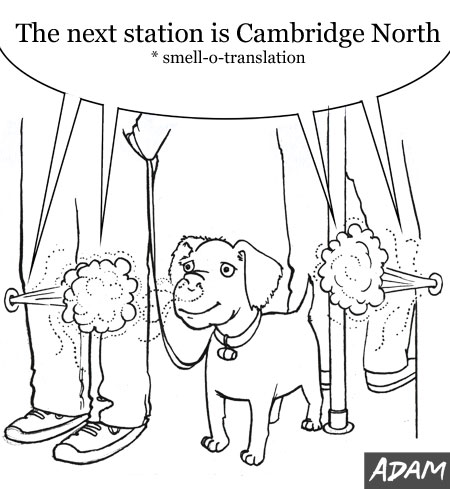 Dog Friendly Trains