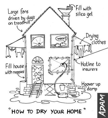 How to dry your home