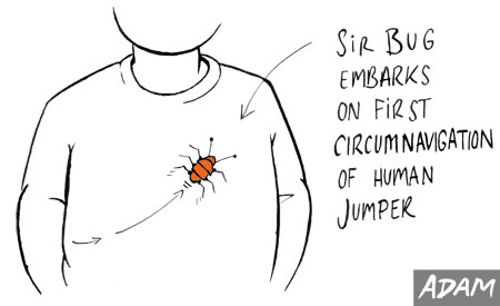 Sir Bug embarks on first circumnavigation of human jumper