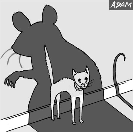 Massive Mouse