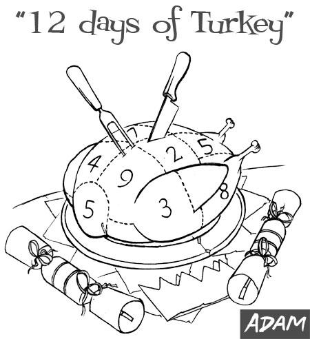 12 days of Turkey