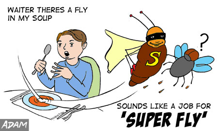 Sounds like a job for SUPER FLY!