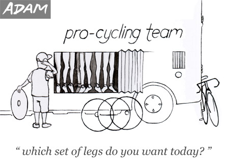Which set of legs do you want to use today?